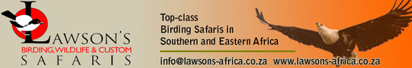 Lawson's Birding Wildlife and Custom safaris