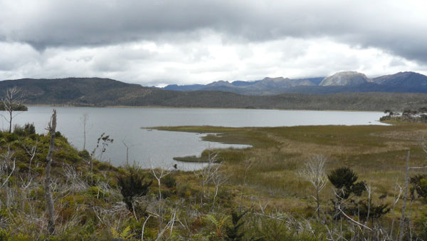 Lake Habema and surrounding alpine habitat; photo by F. Verbelen and B. Demeulemeester